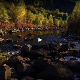 Krátky film o Ciroche