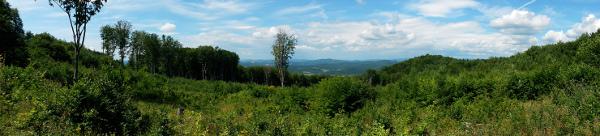 Cirosska dolina