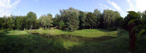 rybniky_pticie_14_600px